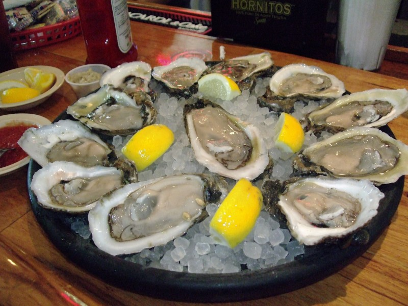 Oysters on the half-shell.