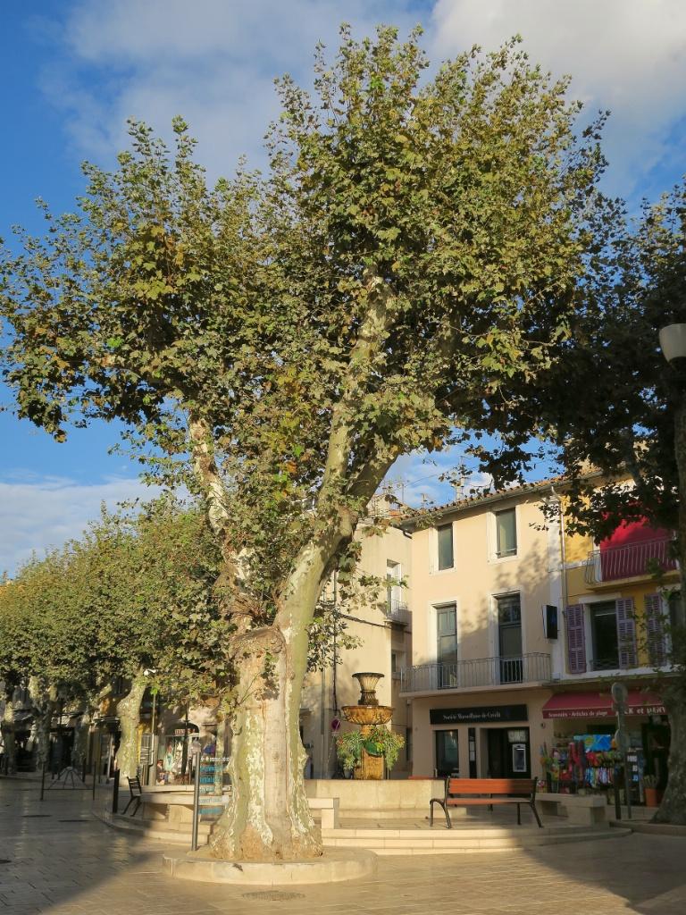 Place de la République Cassis France