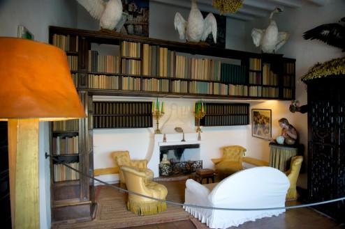Dali House Library