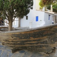 Dali House Tree in a Boat