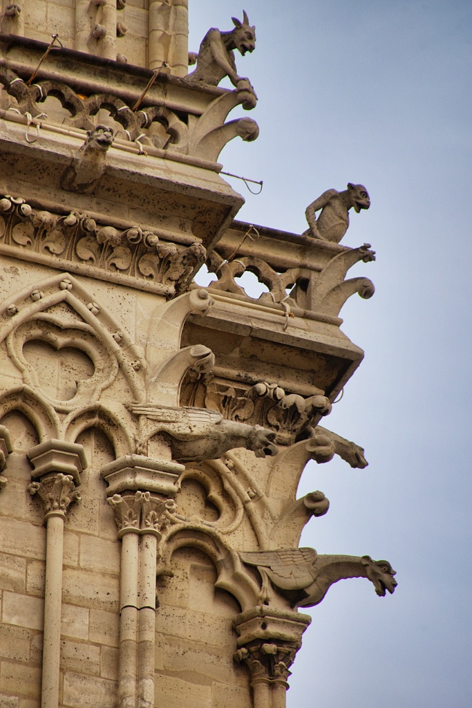 Chimeras and Gargoyles Notre Dame Paris France