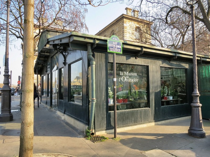 What to see and do in Paris the Flower Market