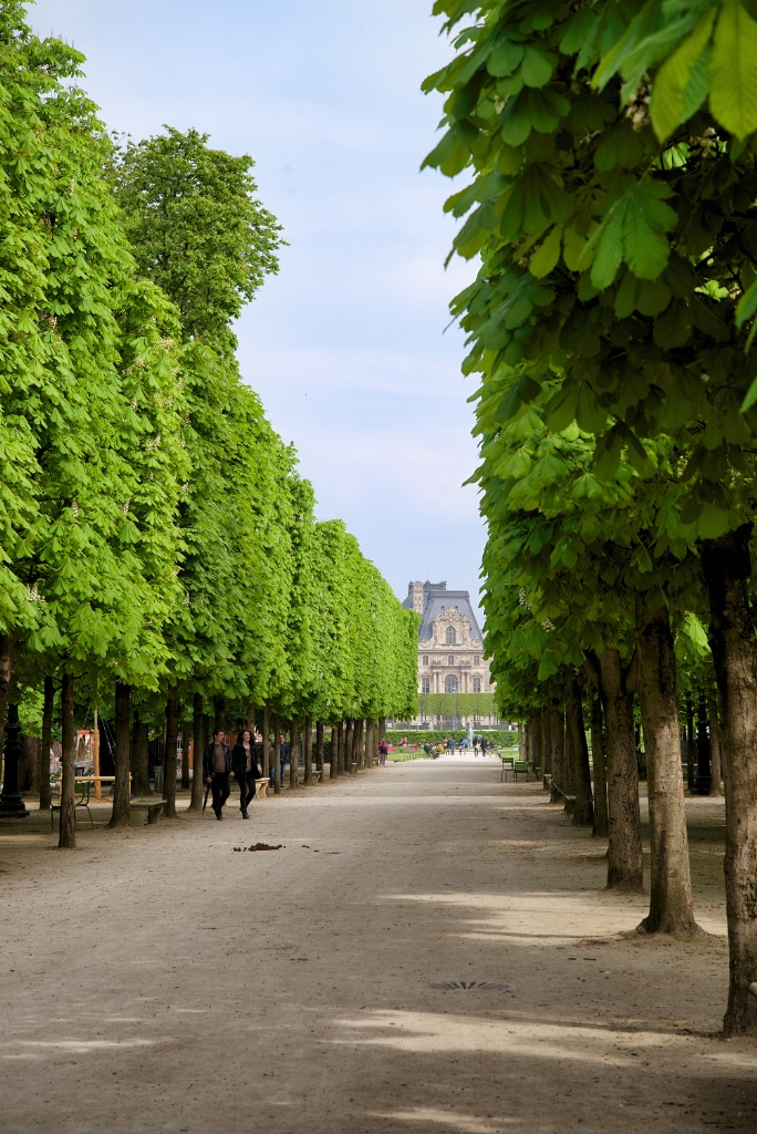 walking path tuileries gardens paris france - Tuileries Garden
