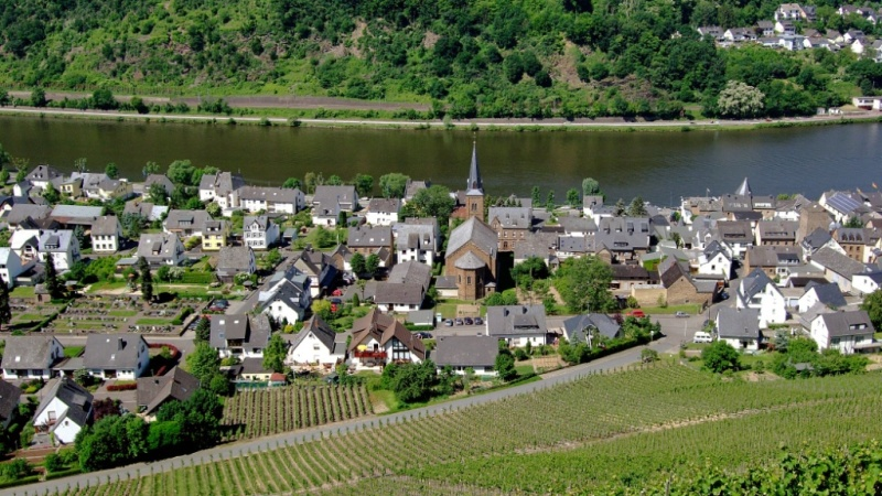 View from Burg Thurant Mosel Wine Region Germany