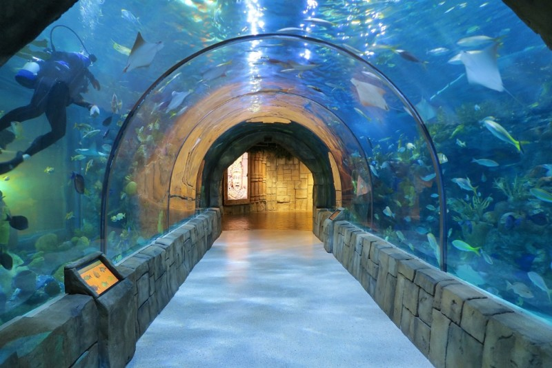 Louisiana Public Aquarium : ... the Underwater Tunnel Aquarium of the Americas New Orleans Louisiana