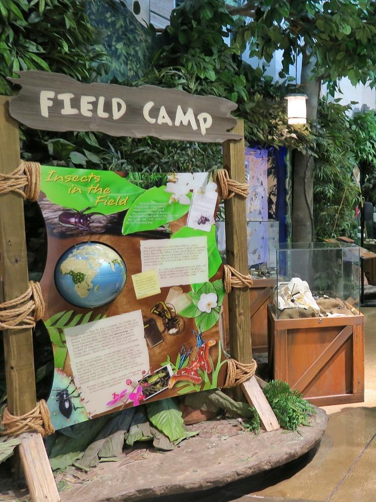 Field Camp Display Audubon Butterfly Garden And