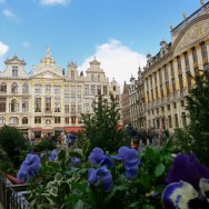 Houses 28 to 20 and Maison des Ducs de Brabant Grand Place Brussels Belgium