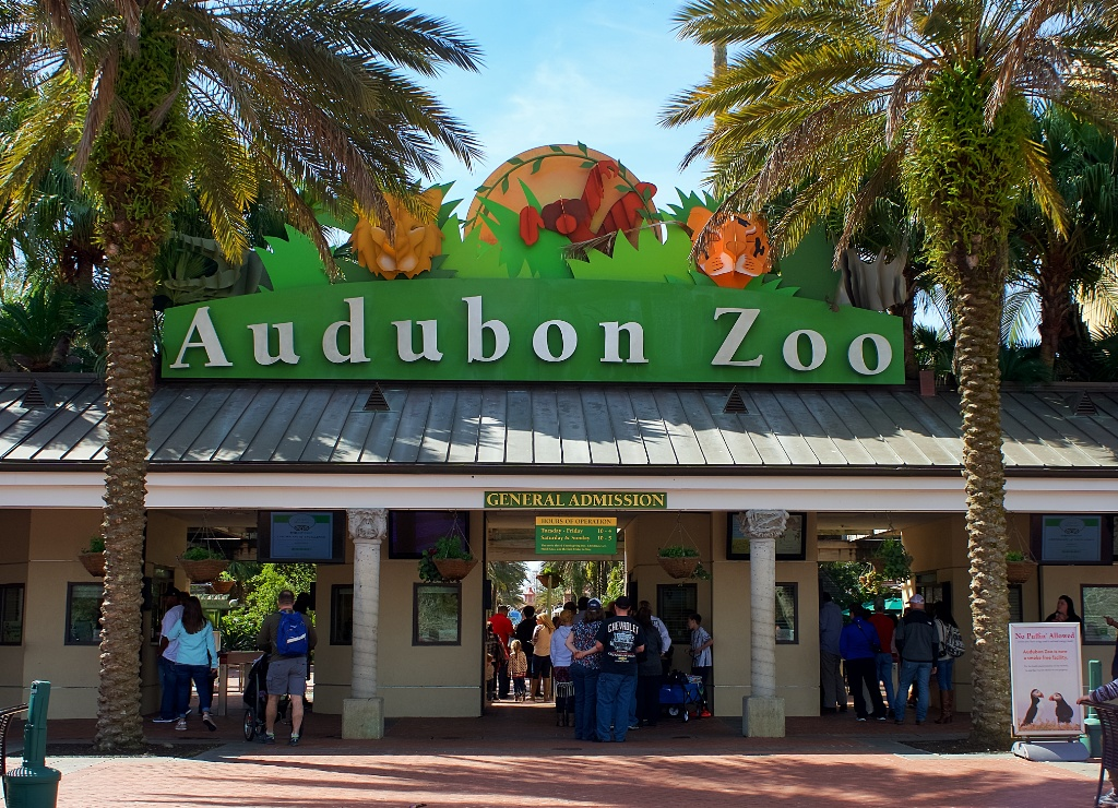 Things To Do In New Orleans With Kids Visit Audubon Zoo