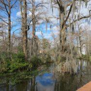 ULL Cypress Lake Lafayette, Louisiana