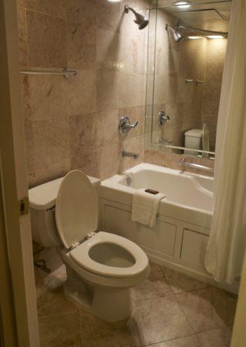 Bathroom Dauphine Orleans Hotel New Orleans