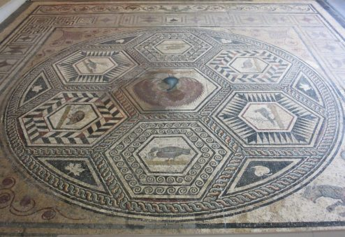 Peacock Mosaic Archaeological Museum Puymin Vaison la Romaine