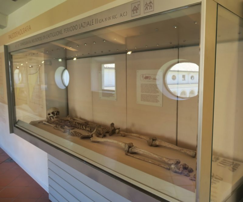 Human Skeleton Baths of Diocletian Rome Italy